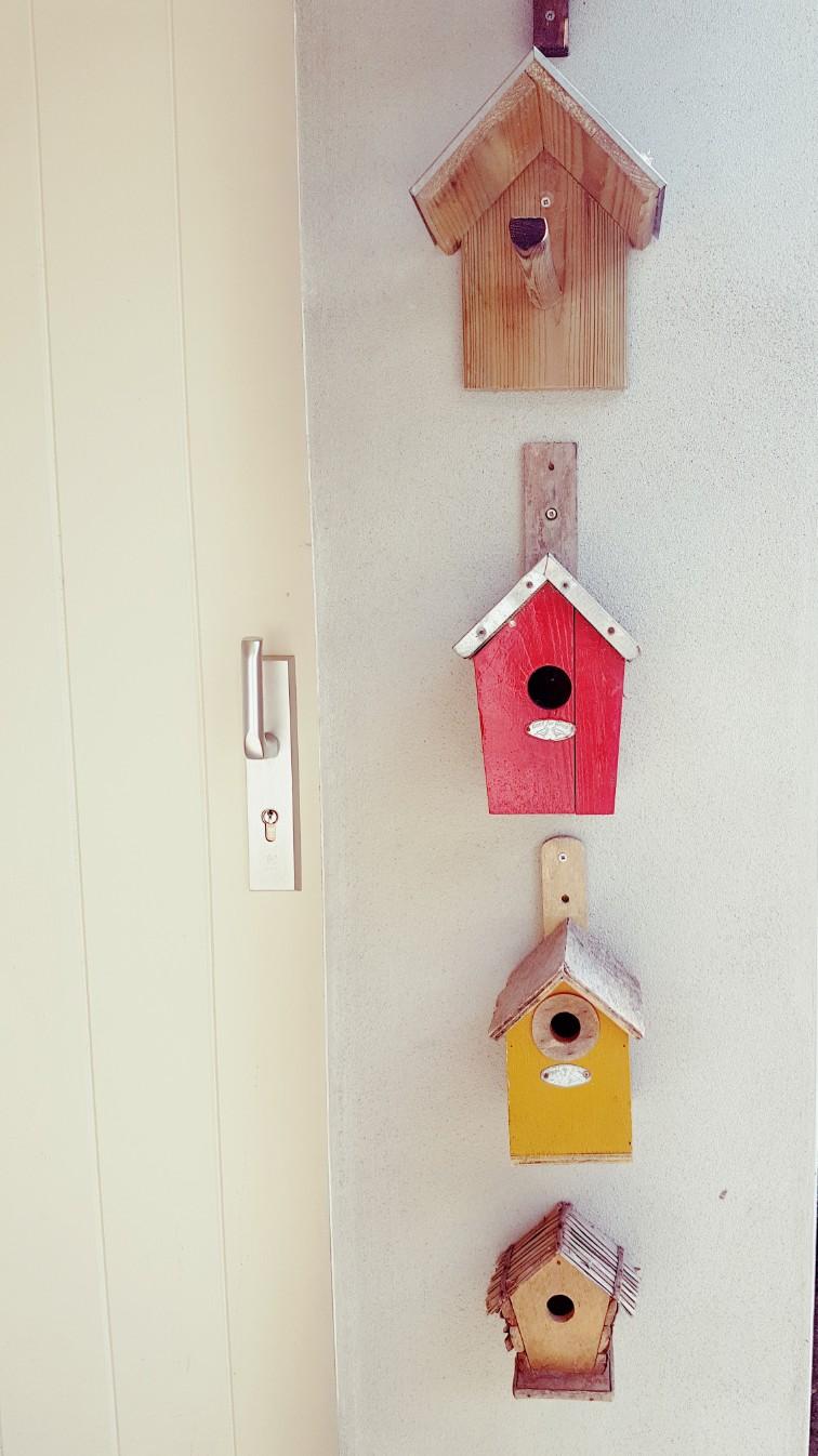 Vogelhuisje verzameling