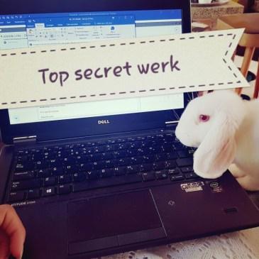 wit konijn loopt over toetsenbord laptop