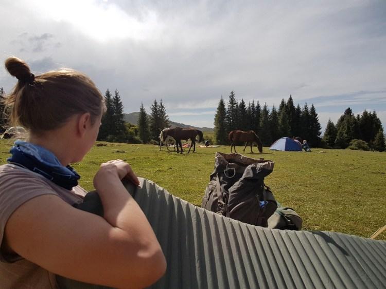 Paarden kamperen Kirgizië bergen tent