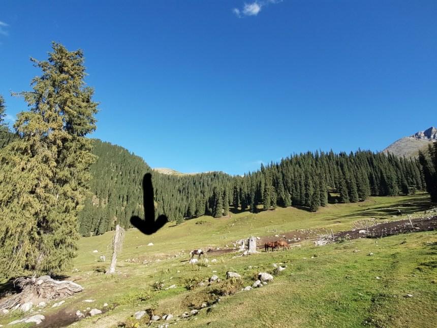 Kirgizië bergen kamperen tent