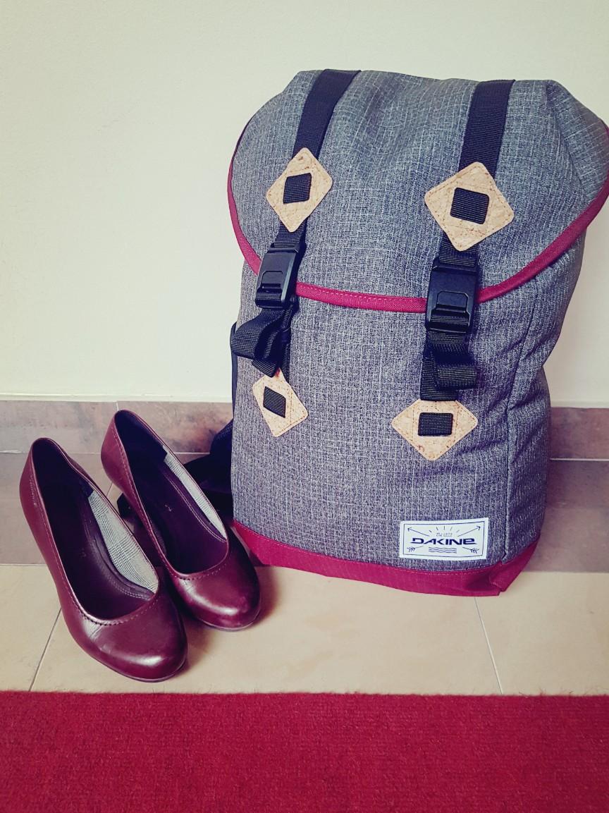 Onmisbaar op reis: een rugzak geschikt als handbagage – Dakine Trek II 26L