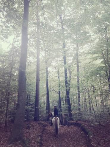 Wandelen en paardrijden met vriend