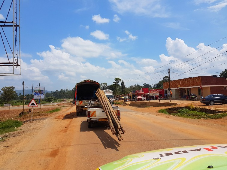 Hout vervoeren Oeganda