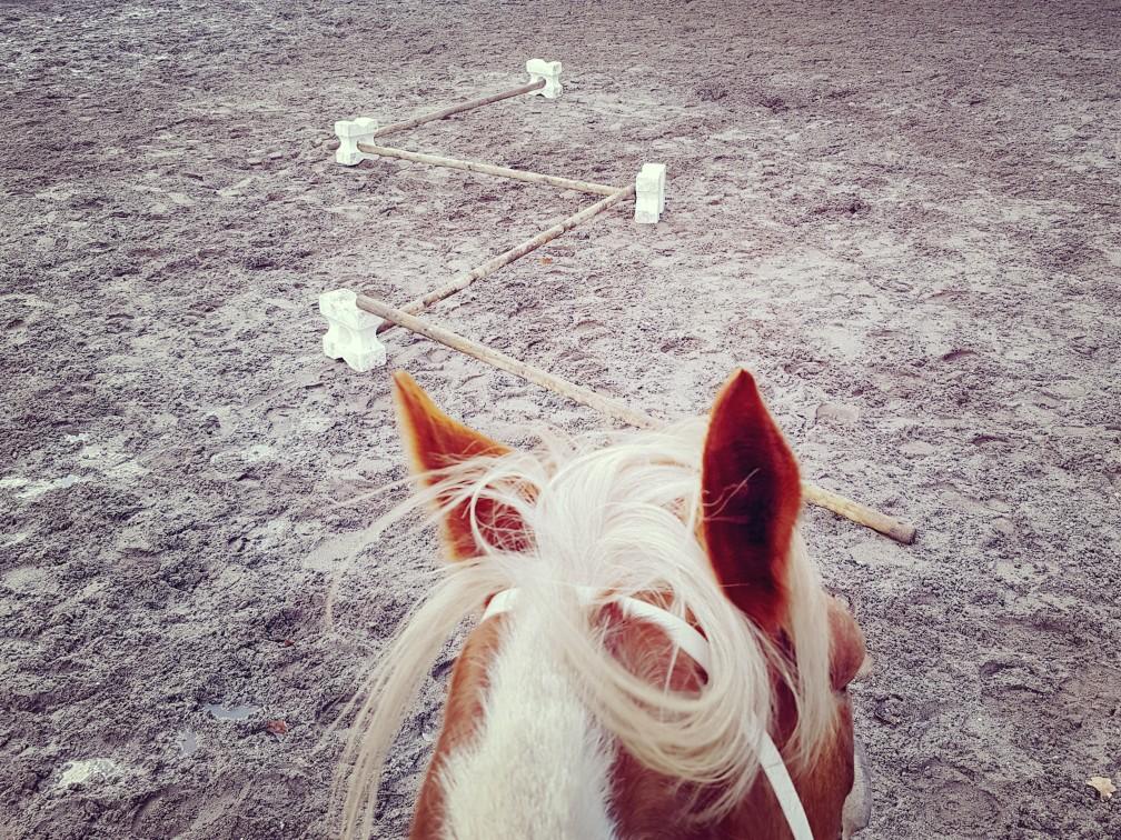 cavaletti paardrijden