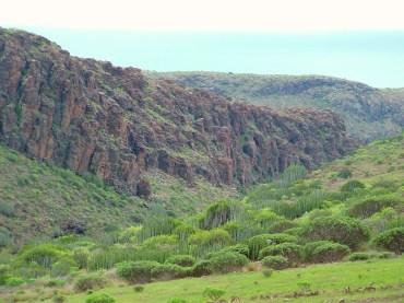Natuur Gran Canaria