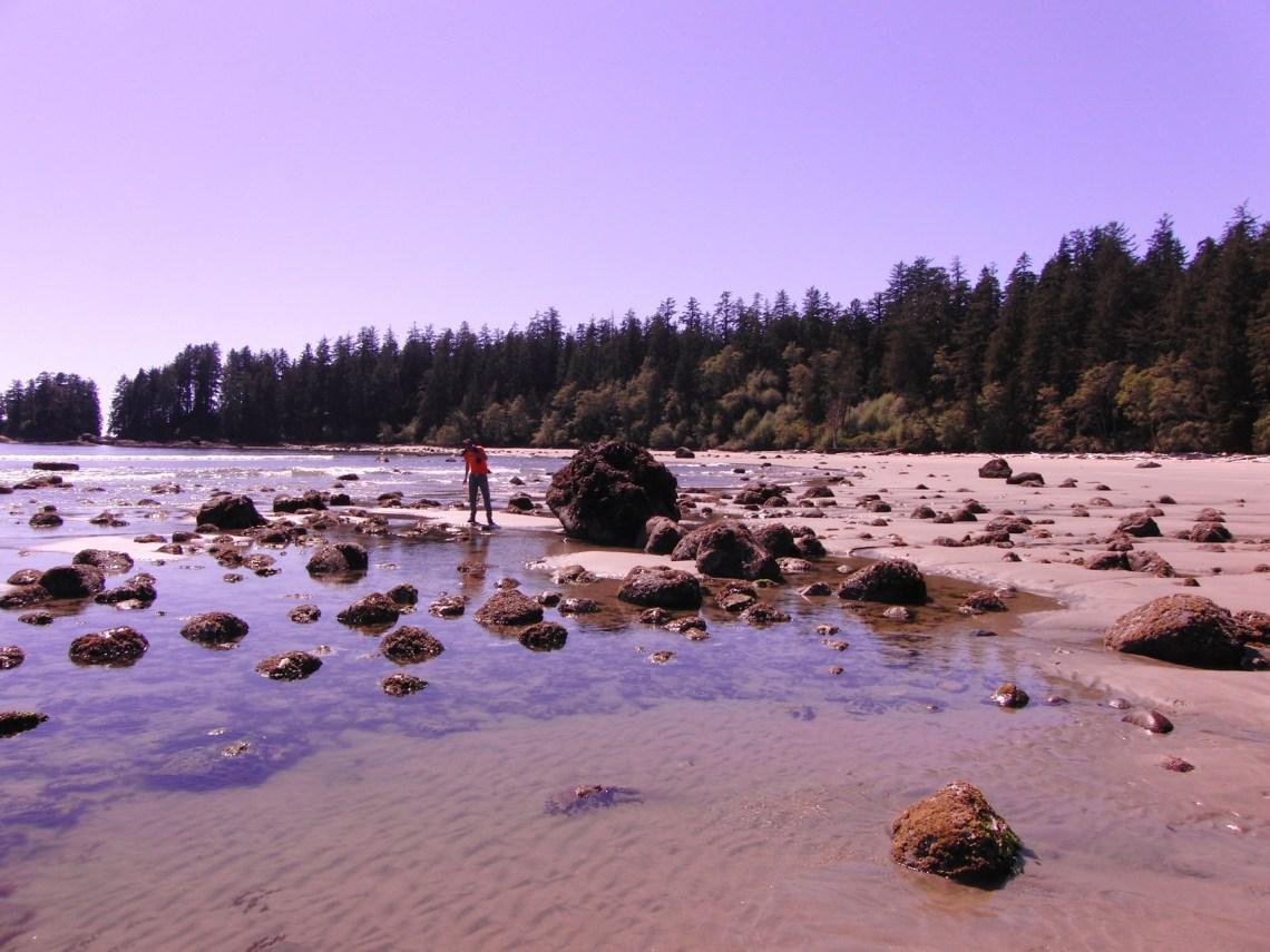 Vancouver Island Canada strand Tofino
