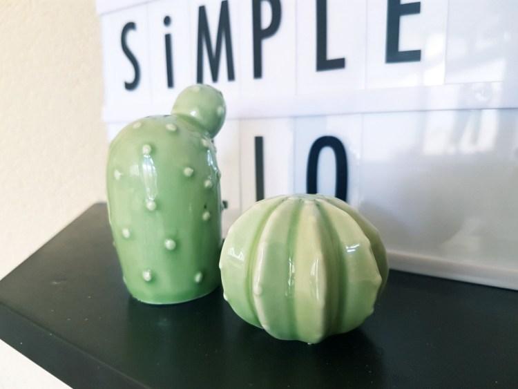 Porseleinen cactus Praxis