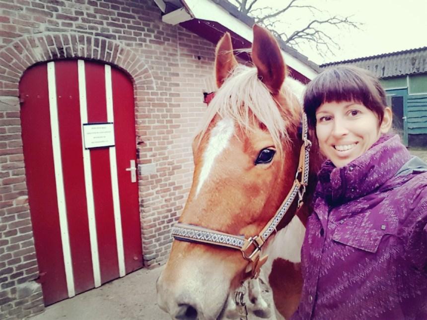 Selfie met paard