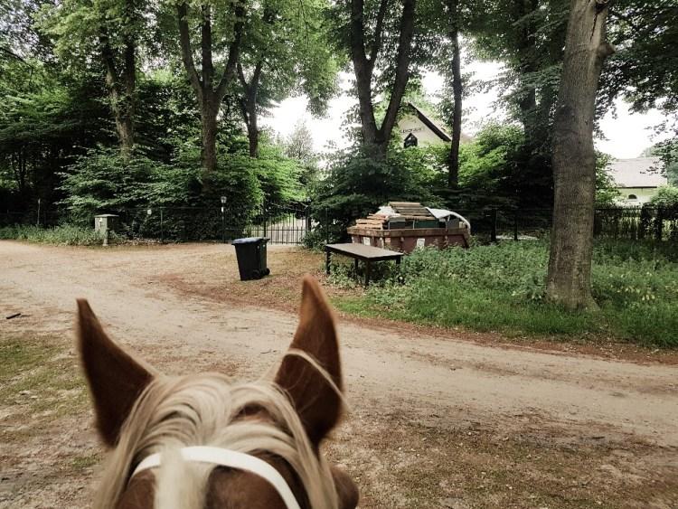 Landgoed Warnsborn Arnhem paardrijden