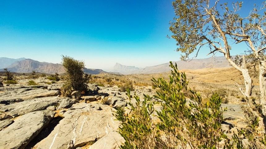 Jebel Shams wildkamperen Oman