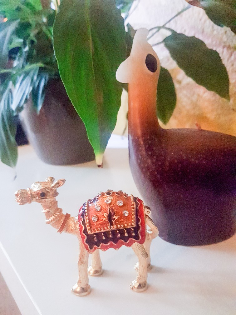 kameelsouvenir Oman
