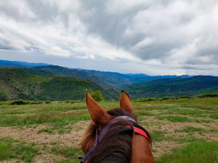 Endurance paarden Lozere Frankrijk Sommant Horse team