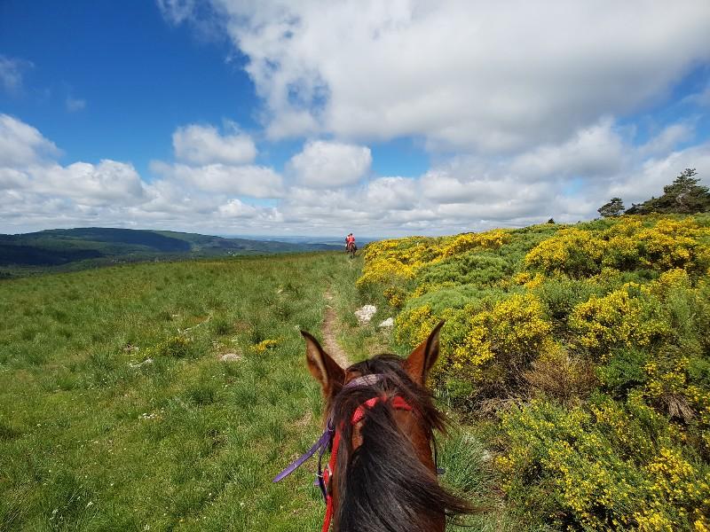 Endurance Frankrijk paardrijden Sommant Horse team