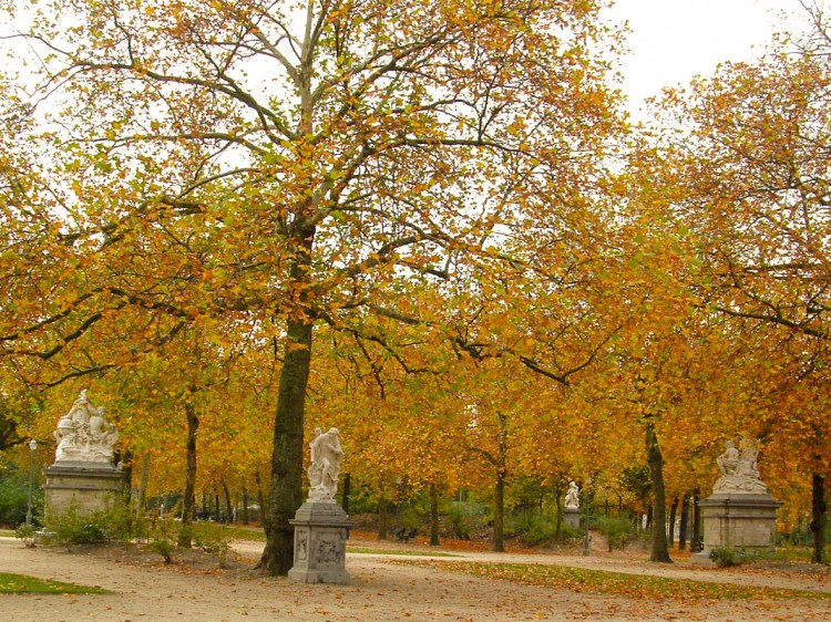 Warandepark Brussel België