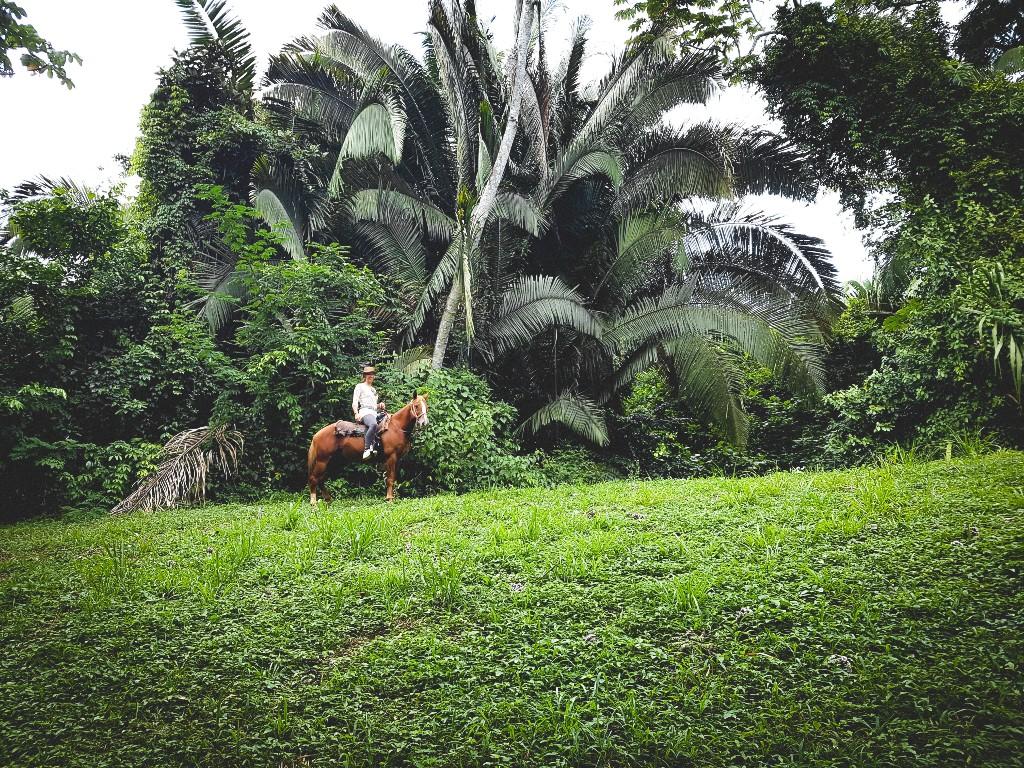 Review; paardrijden Belize (dagtocht)
