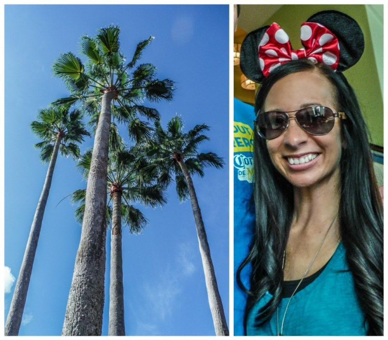 Palms trees and Minnie Mouse ears