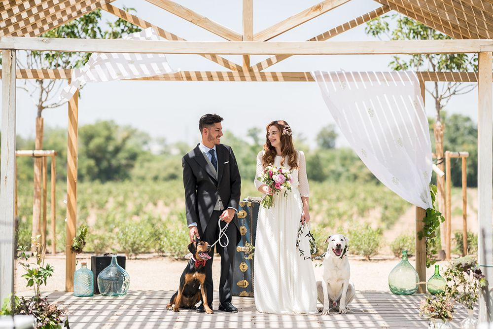 mascotas en bodas