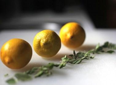 Lemon and oregano