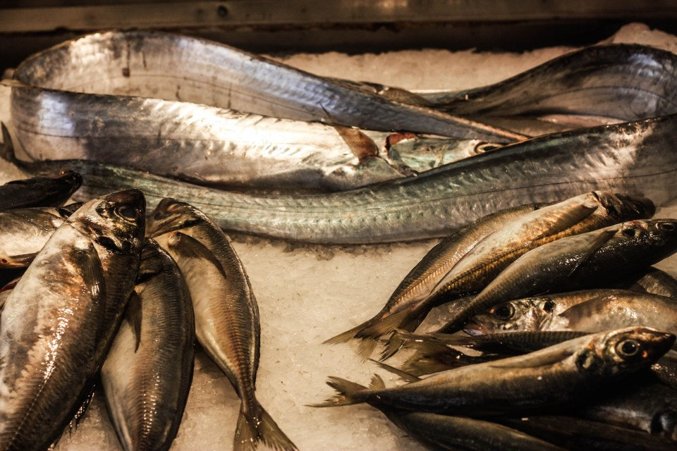 Mercado Da Ribeira (Lisbon): The fish market