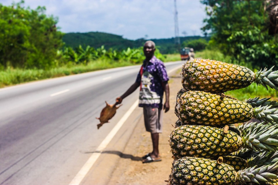 Backpacking from Accra to Cape Coast: The roadside stalls