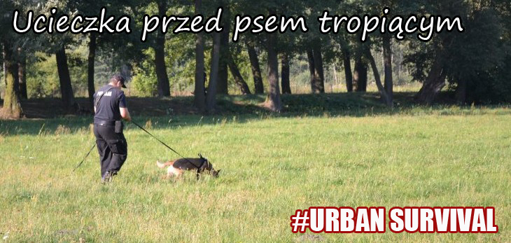 Ucieczka przed psem tropiącym #Urban survival
