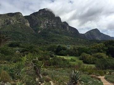 fidelity bot garden mountain