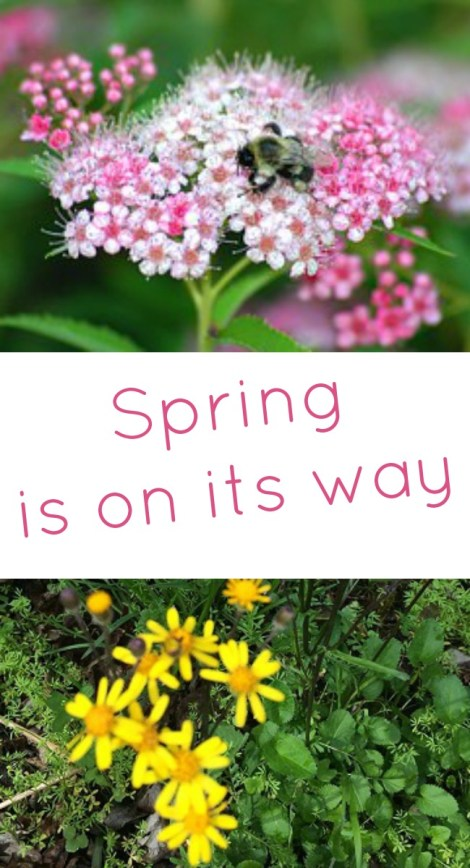 Pinterest Spring is on its way