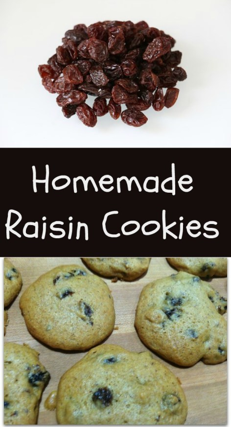 pinterest raisin