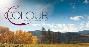 Colour BC VQA Fall Release tasting