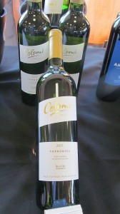 Colome Torrontes 2011
