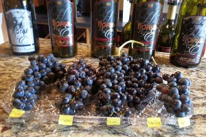 Horan wines and their red grapes