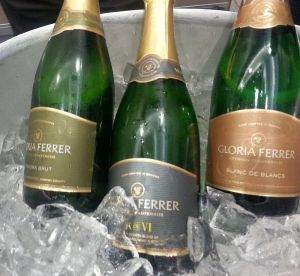 Gloria Ferrer flight of sparkling wine