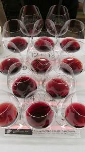 New Zealand Pinot Noir flight to taste