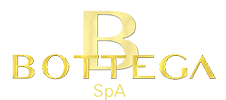 BOTTEGA SPA logo