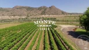 Monte Creek Ranch Winery vineyard