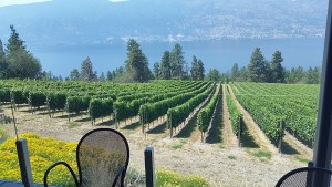 A beautiful view of Lake Okanagan at the patio restaurant of Arrowleaf Cellars