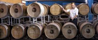 Barrels at Cellers Baronia de Montsant