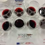 Dynamic Spain seminar flight of wines at VanWineFest 2018