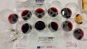 Dynamic Spain seminar flight of wines at VanWineFest 2018
