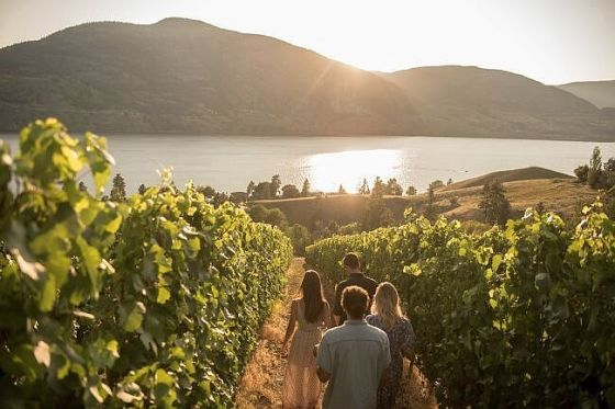 The Okanagan Wine Initiative_preview