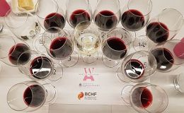 A flight of Argentina Malbecs and other wines