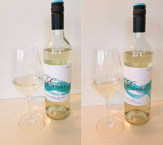 Evolve Cellars Sauvignon Blanc and Pinot Gris wines in glasses