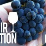 BC Pinot Noir Celebration logo