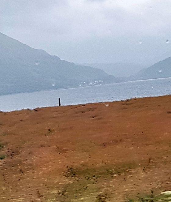 A Viking marker stone