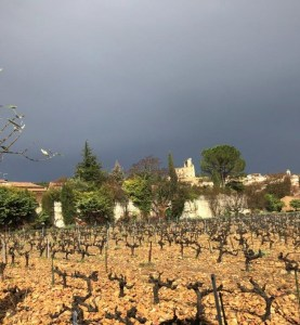 Some vineyards from Domaine Duseigneur (Photo courtesy Domaine Duseigneur)