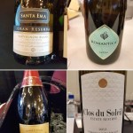 Recommended wines from around the world during VanWineFest 2020