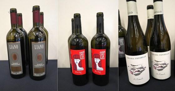 """Umberto Cesari Rubicone Sangiovese Cabernet Sauvignon Liano 2016, Trere Sangiovese Superiore Riserva DOC """"Amarcord D'un Ross"""" 2016, and Chiara Condello Le Lucciole 2015 wines at VanWineFest 2020"""