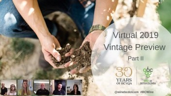 BC Virtual 2019 Vintage Preview II