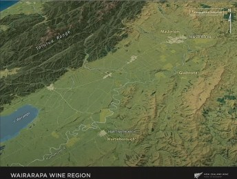 Wairarapa Wine Region in New Zealand