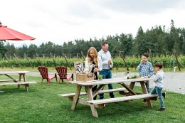 Singletree Winery Picnic Area (Photo Credit @winebcdotcom)